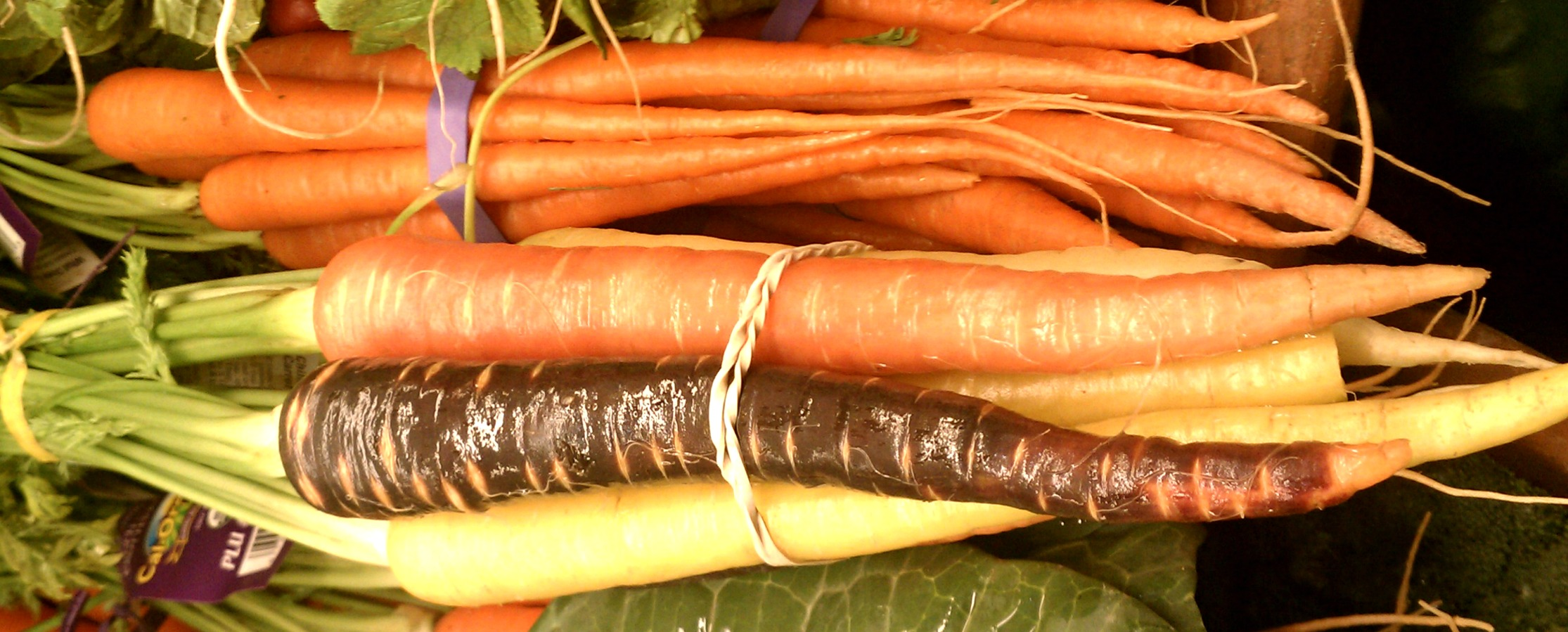 colorful carrots-Anne-of-Green-Gardens