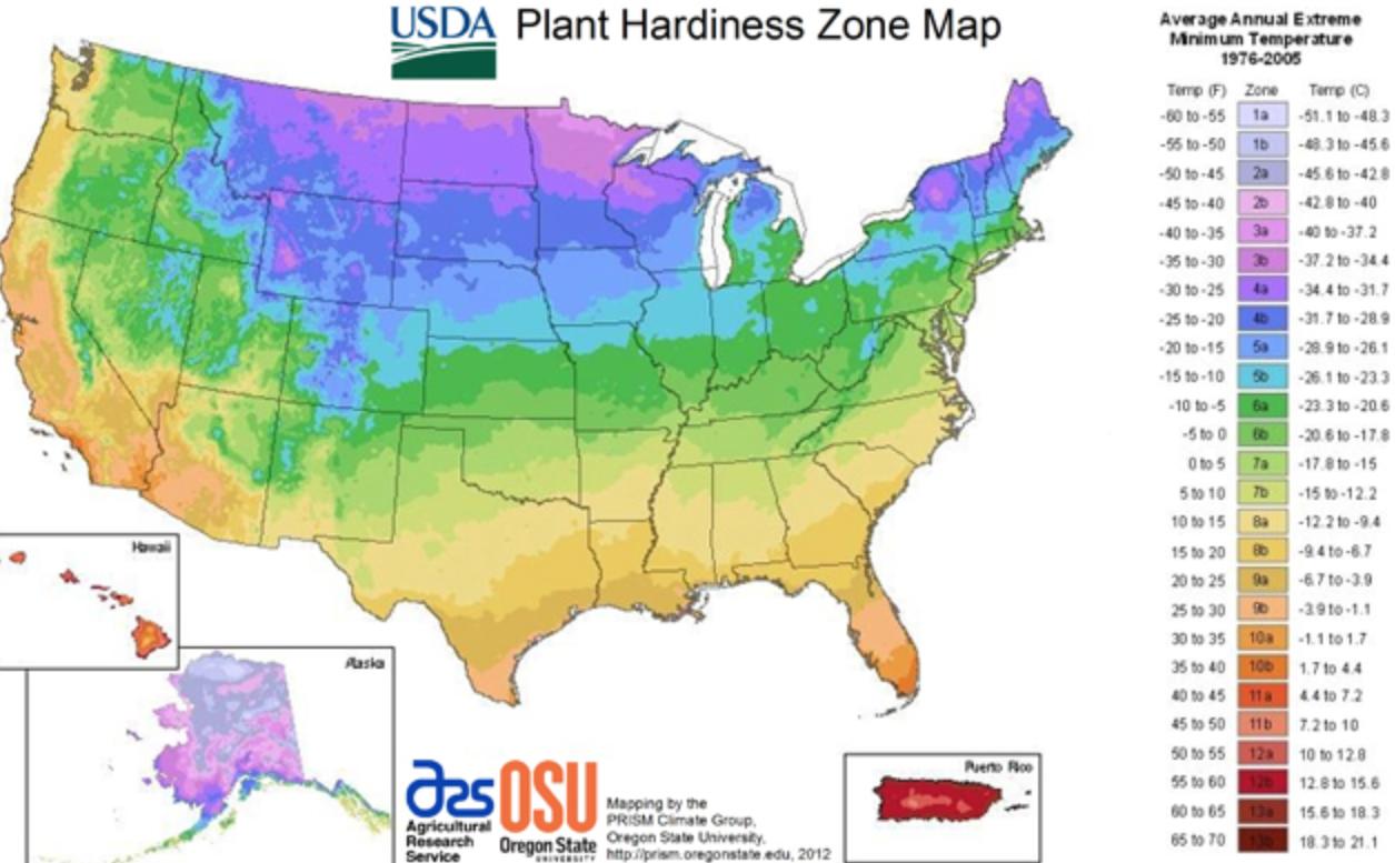USDA Plant Zone Map