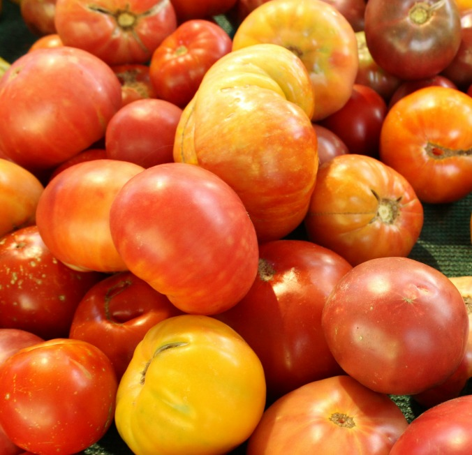 various tomatoes-Anne-of-Green-Gardens