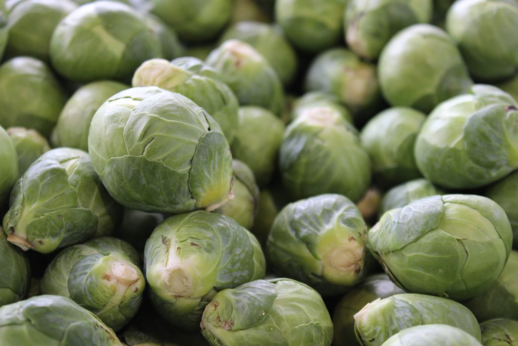 brussels-sprouts-Anne-of-Green-Gardens