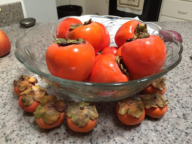 Hachiya persimmons. (photo by Anne)